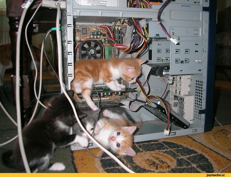 нужные программы для компьютера