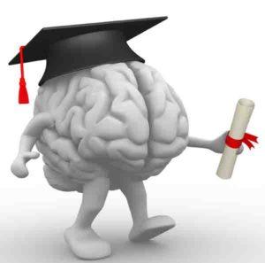 указание мозга